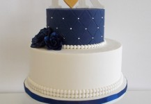 Simple Navy and White